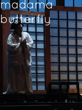 copertina_butterfly